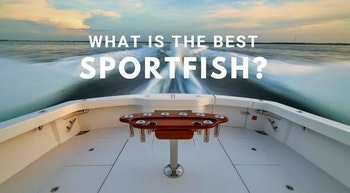 photo of What Is The Best Sport Fishing Boat?